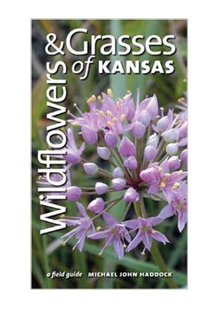 Wildflowers & Grasses of Kansas